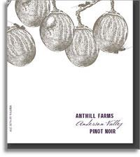 2009 Anthill Farms Pinot Noir Anderson Valley