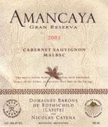 2011 Bodegas Caro Amancaya Gran Reserva Mendoza