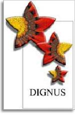 2005 Bodegas Viña Magaña Dignus Navarra