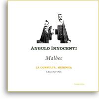 2010 Angulo Innocenti Malbec La Consulta Mendoza